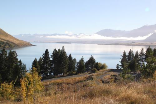 NZ - Lake Tekapo