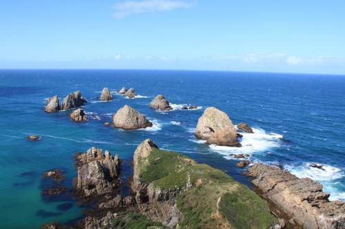 NZ - Nugget Point