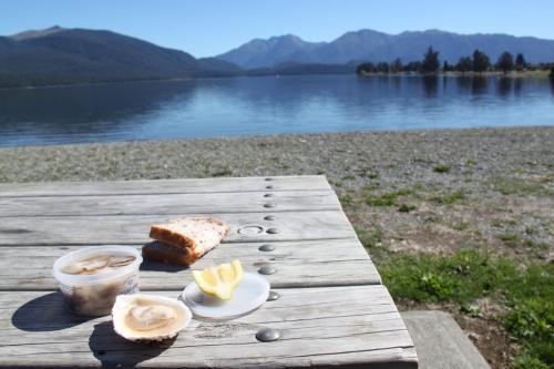 NZ - picnic Lake Te Anau