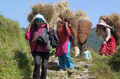 Nepal - Korfdragers
