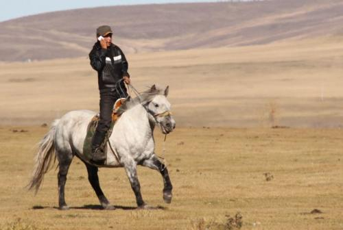 Nomaden - Mongool met GSM te paard