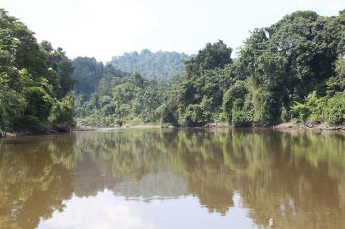 PNG - Arafundi river