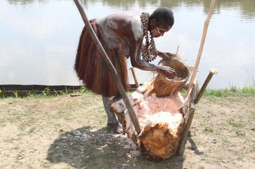 PNG - Hart Sago palmboom