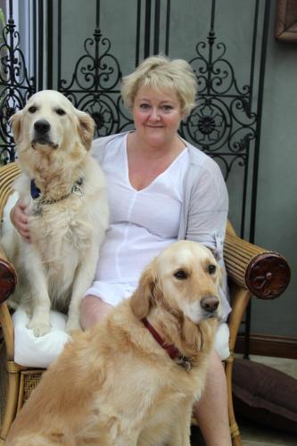 Perth honden