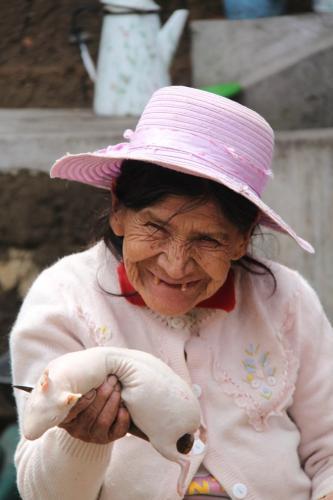 Peru - Guinea pig stripping