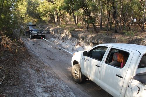 QLD - Fraser solidariteit Jeeps