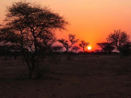 Sunset Etosha NP