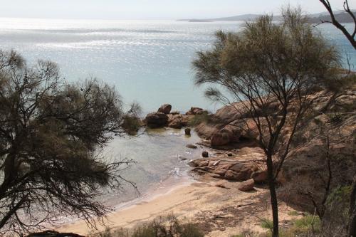 TAS - Honeym Bay