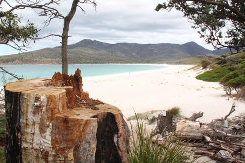 TAS - Wineglass bay beach