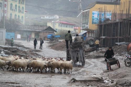 Tibet - Langmusi straat