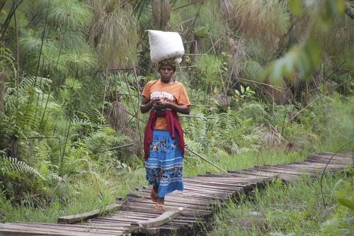 Vrouw op wandel