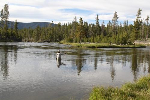 Yellowstone - fly fishing feature photo