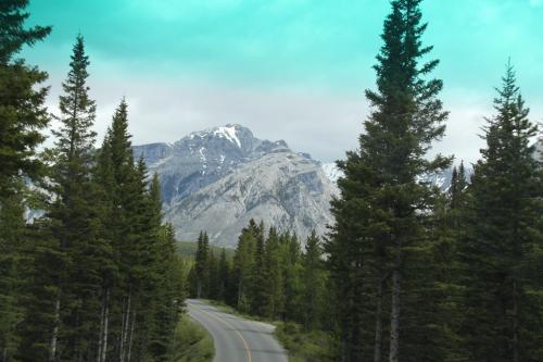 Yoho - Spray Lake route Canmore